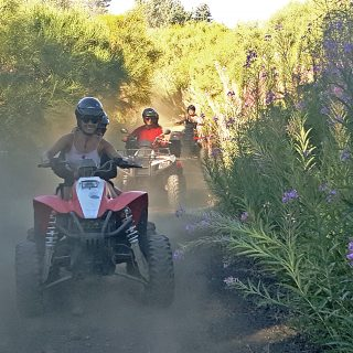Etna quad - quad driving in the dust on the Mount Etna