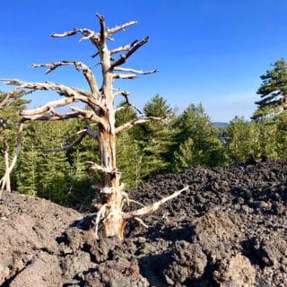 Etna vulcano - Etna tour - Etnaquad - Piano Provenzana