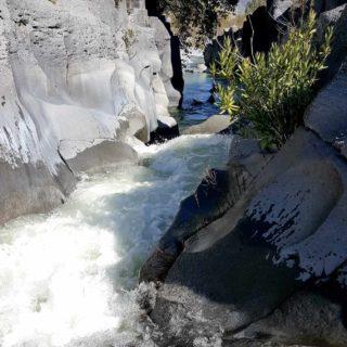Alcantara Fiume Ponte - Quad Escursione