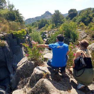 Alcantara quad tour - Etna Quad