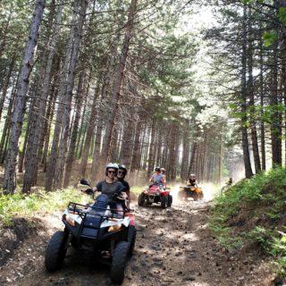 etna forest quad tour