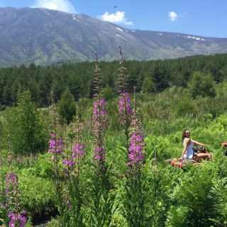 Fioritura sull'Etna - Etna Quad
